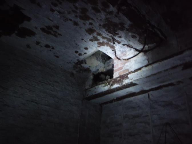 Hoe bereid je je voor op een ghost hunt?