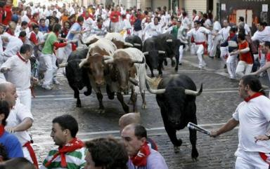 Fifth bull run