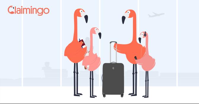 Vlucht vertraagd of geannuleerd? Misschien heb je recht op een compensatie!