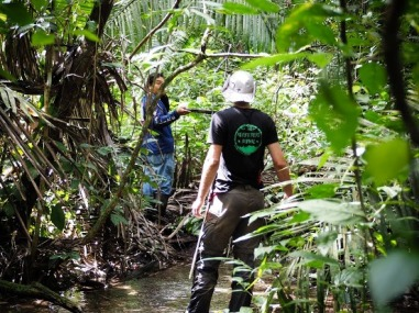 Belize Jungle Survival