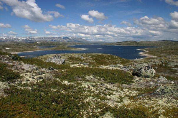 Hardangervidda 03. jul. 04 til 04. jul. 04. .