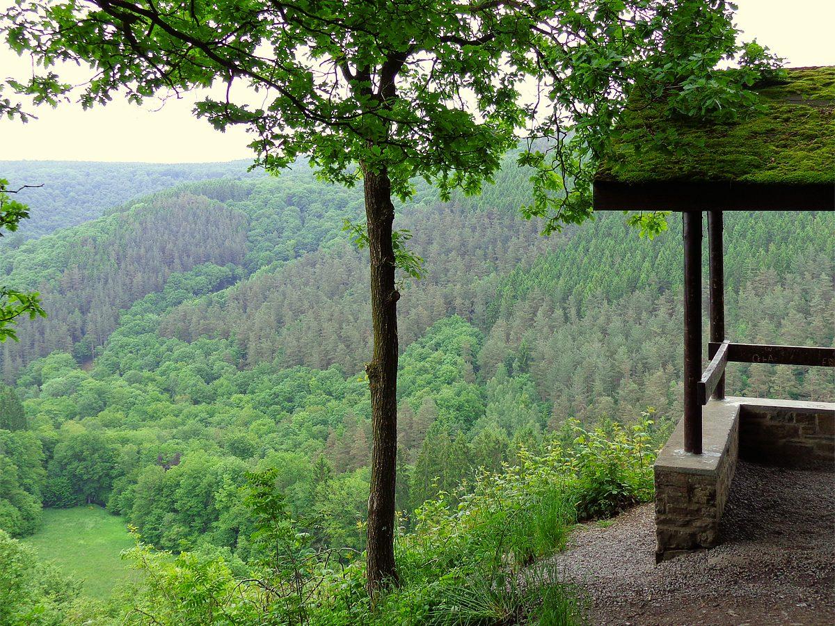 panorama-ninglinspo-wandeling-e1540553005588
